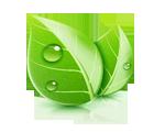 Экологически чистые двери: материал, краски
